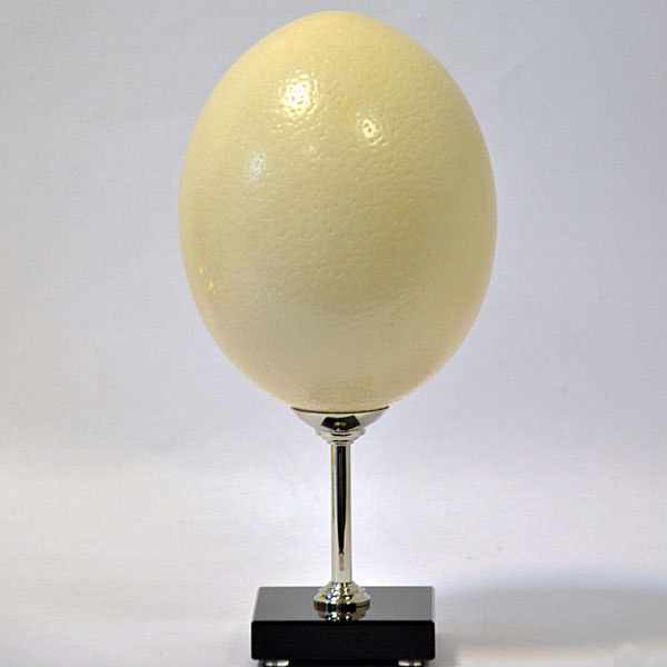3391-Ostrich-egg-on-nickel-plated-brass